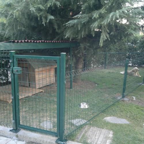 evcil hayvan barınağı kapısı